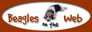 Beagles on the Web -- that's Clayton